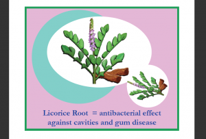 Licorice Root for Oil Pulling