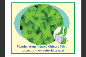 Menthol Chinese Mint for Oil Pulling